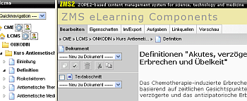Lerninhalte in LMS/LCMS-Kombination