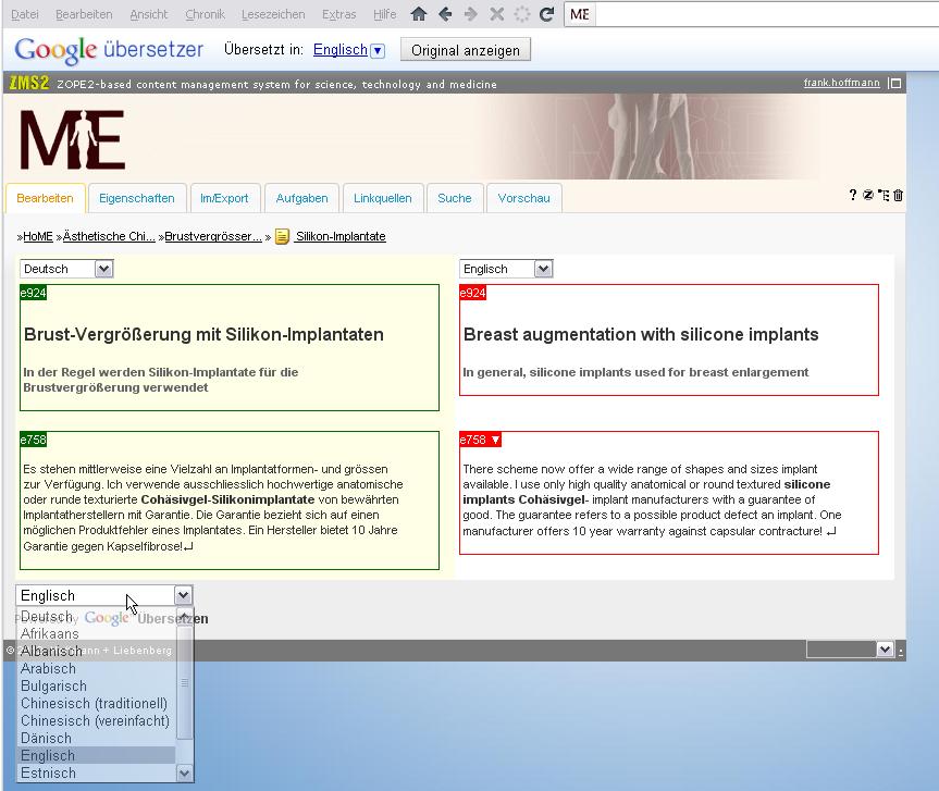Übersetzungs-Hilfe: Parallel-Ansicht und Google Translator