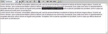 Textarea_Zeichenformate