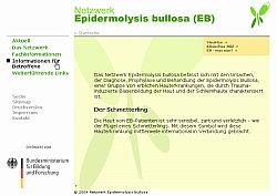 Netzwerk Epidermolysis bullosa